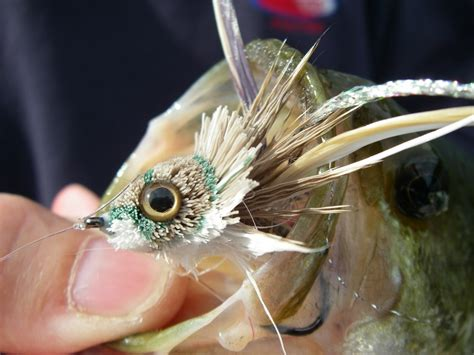 Fly Fishing for Largemouth Bass - Northern Michigan