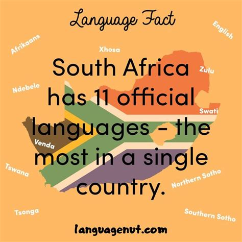 Learn More About The 11 Official Languages Of South Africa