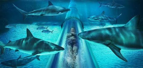 The Atlantis in Bahamas Will Double Your Lust for Water