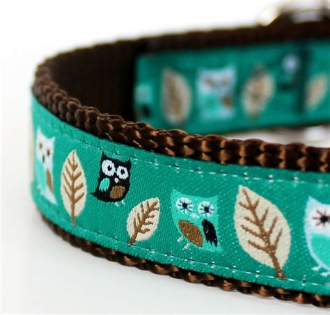 Owl Dog Collar in Teal Green / Hootie / Woodland by