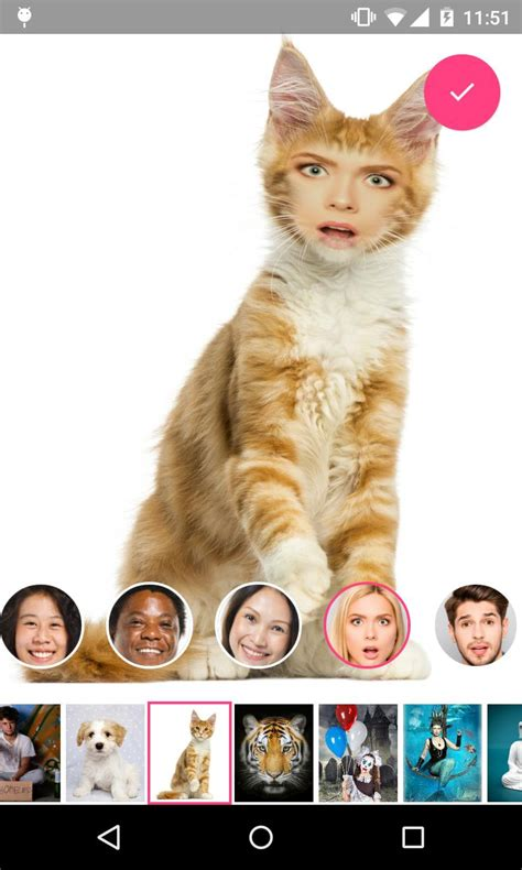 Face Changer 2 for Android - APK Download