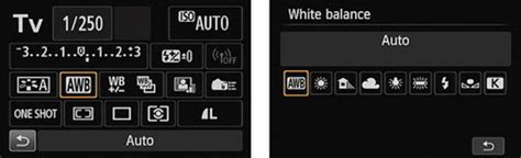 How to Change the White Balance Setting on a Canon EOS 70D