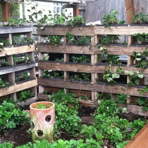 25 DIY Ideas Using Pallets for Raised Garden Beds - Snappy