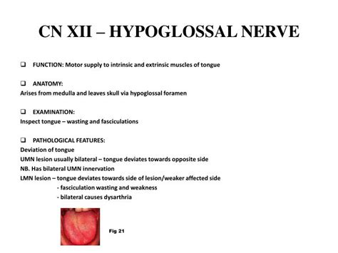 PPT - CRANIAL NERVE LESIONS IN THE EMERGENCY DEPARTMENT BY