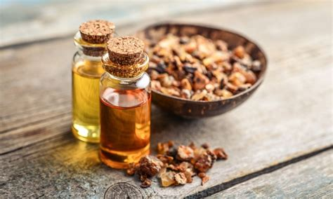 Myrrh Oil: Benefits, Uses, Properties, and Side Effects